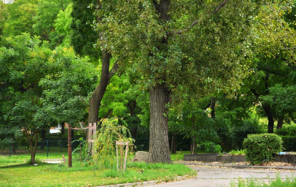 Újpesti Szabadság park, kikapcsolódásra tökéletesen alkalmas